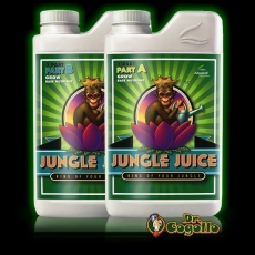 JUNGLE JUICE GROW A+B.