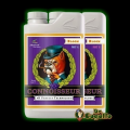 CONNOISSEUR BLOOM A+B pH PERFECT Advanced Nutrients.