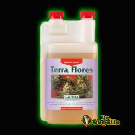 TERRA FLORES Canna.
