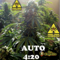 Semillas AUTO 4:20 Biohazard Seeds.