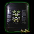 B.A.C. - ORGANIC BLOOM.