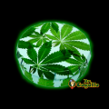 "CAJA CLICK-CLACK ""BUDS LEAVES""."