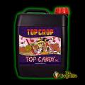 TOP CANDY Top Crop.