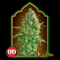 Semillas AUTO DO-SI-DOS COOKIES 00 Seeds.