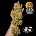 Semillas MARY YEIN - EDICION LIMITADA The Doctor Seeds.